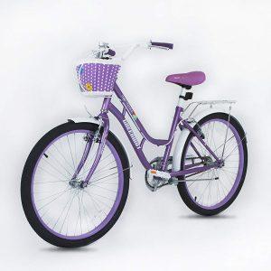 Bicicleta de 20 pulgadas con cesta, color morado